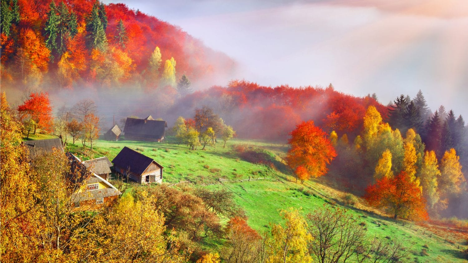 5 reasons to go to the Carpathians in autumn