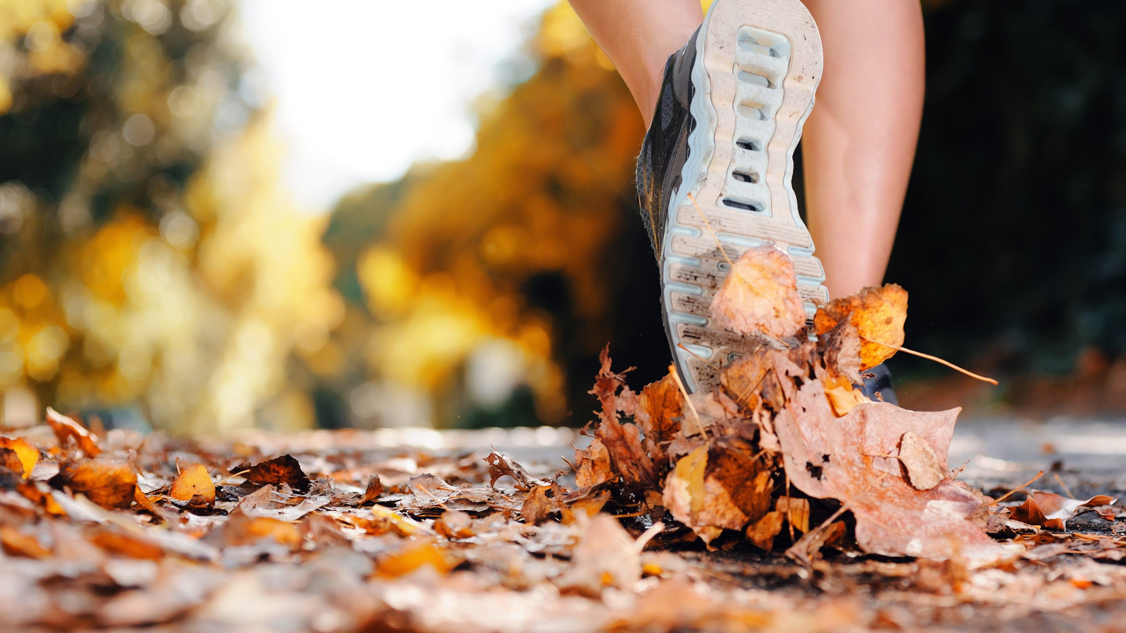 Ways to diversify autumn workouts