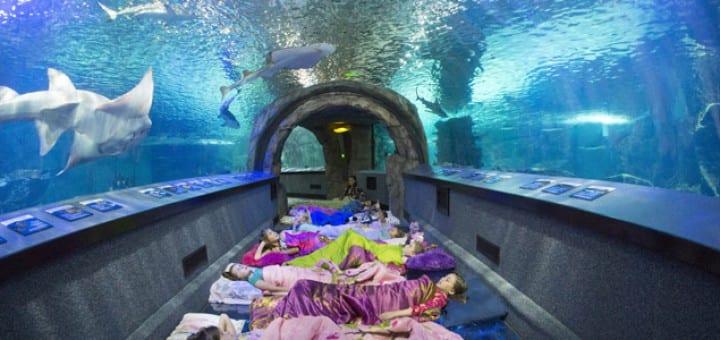 8 original places to sleep